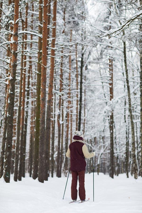 Tylny widoku mężczyzny narciarstwo w lesie obrazy royalty free