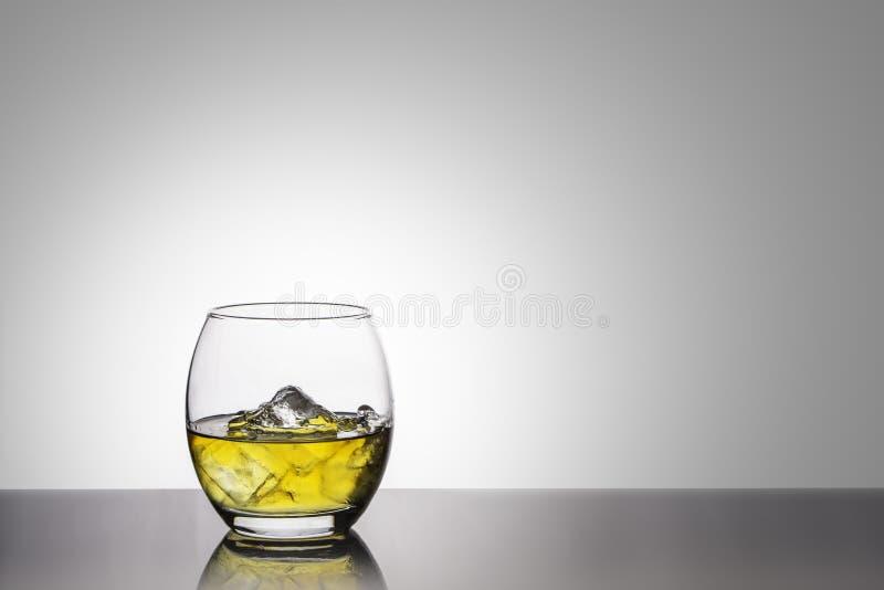Tylny zaświecający owalny szkło złoty whisky z lodem na wysokiej glosy bazie przeciw białemu tłu obrazy royalty free