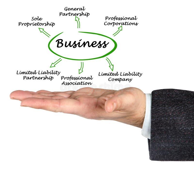 Typ biznes zdjęcie royalty free