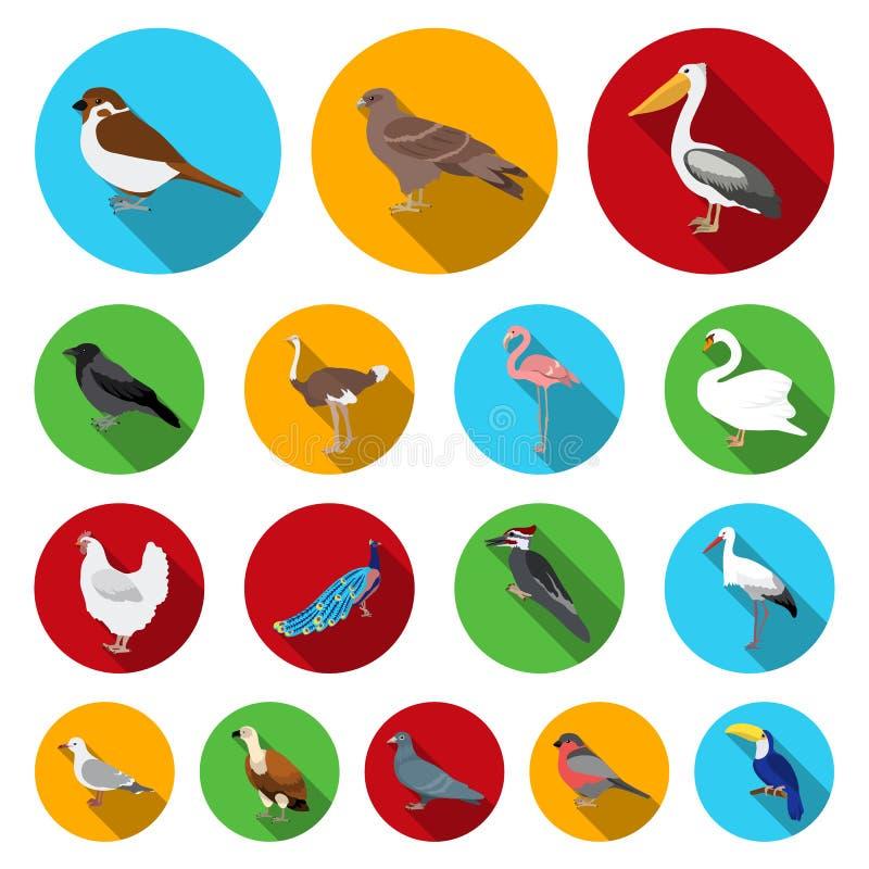 Typ ptak płaskie ikony w ustalonej kolekci dla projekta Domowa i dzika ptasia wektorowa symbolu zapasu sieci ilustracja ilustracji