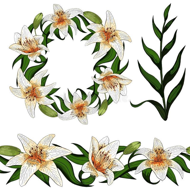 Type élégant fleurs réalistes de tigre de lis d'ensemble d'éléments illustration stock