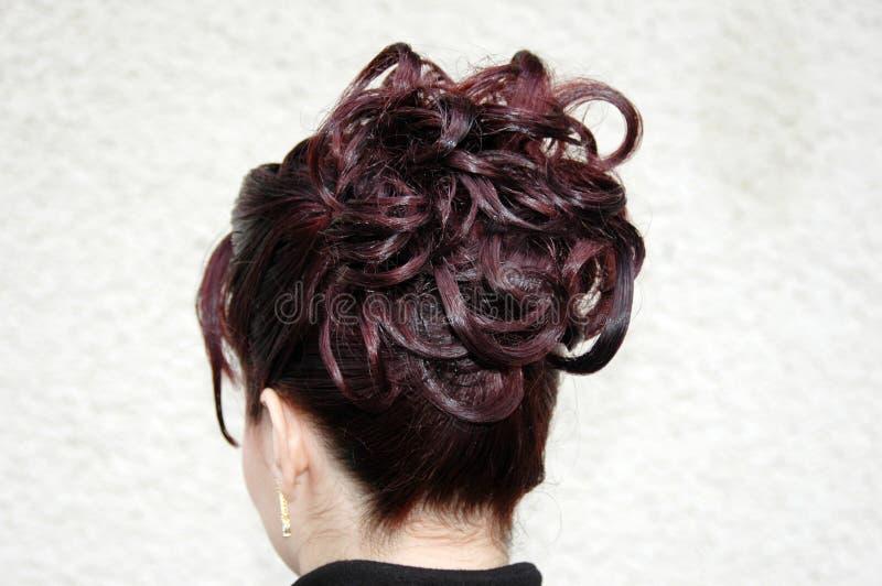 Type de cheveu image stock