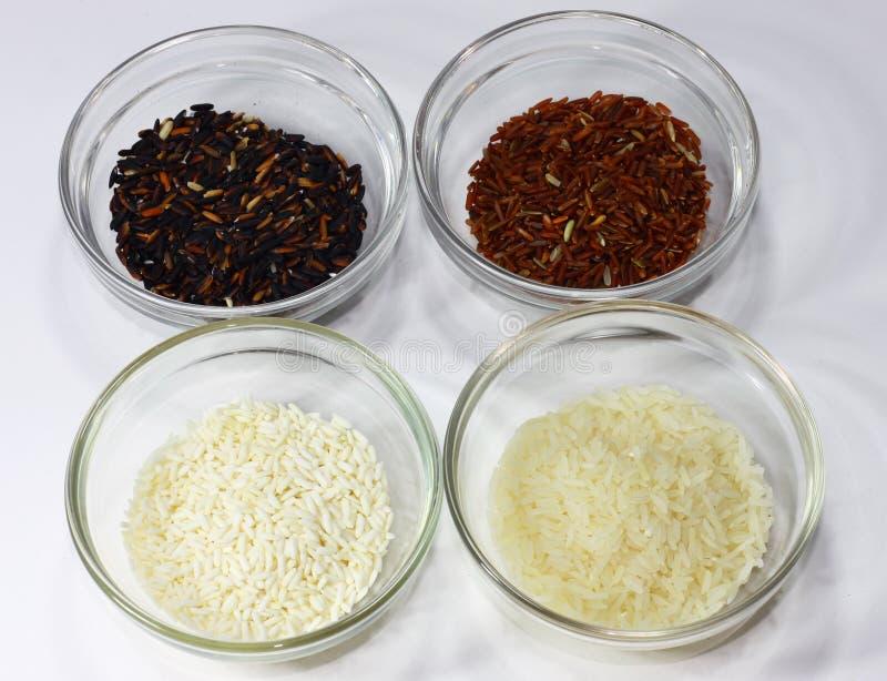 Type différent de riz dans différentes couleurs dans des bols en verre photo libre de droits