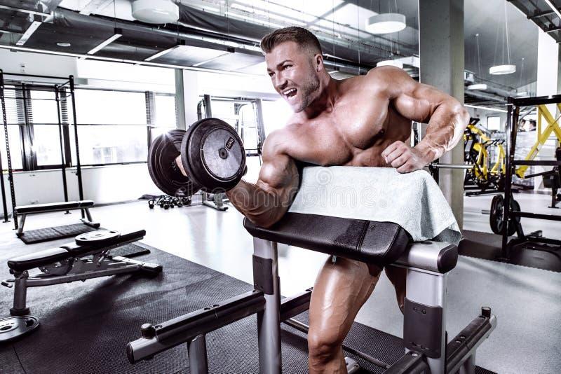Type musculaire de bodybuilder faisant des exercices avec l'haltère image libre de droits