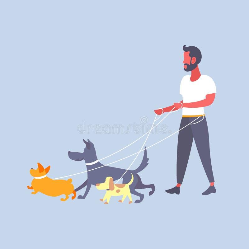 Type occasionnel de marcheur de chien d'homme marchant avec le propriétaire de beaucoup de chiens avec le personnage de dessin an illustration libre de droits