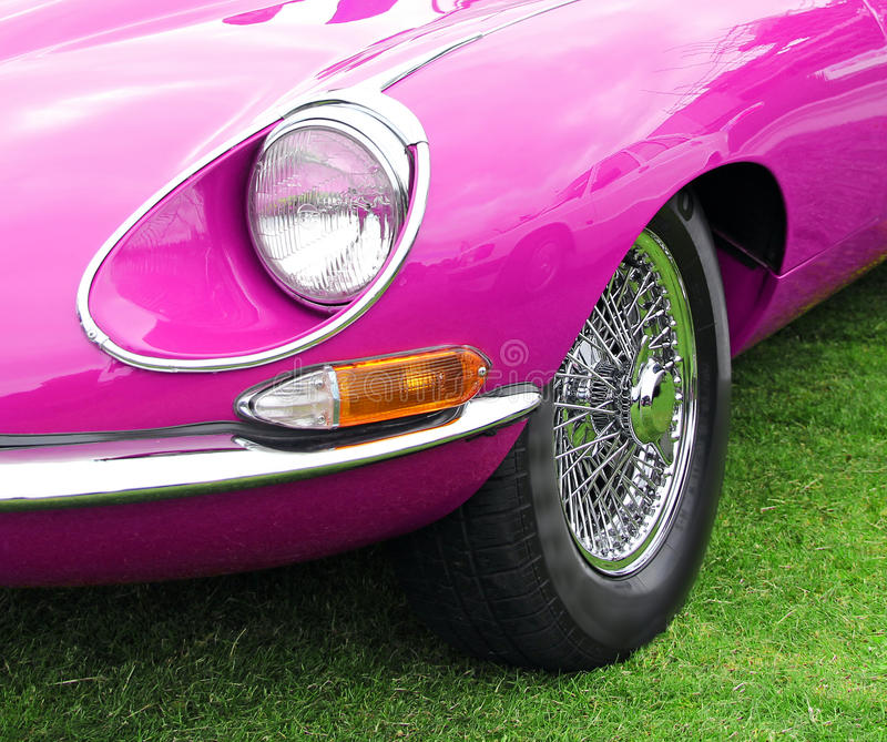 Type rose jaguar d'e photo stock