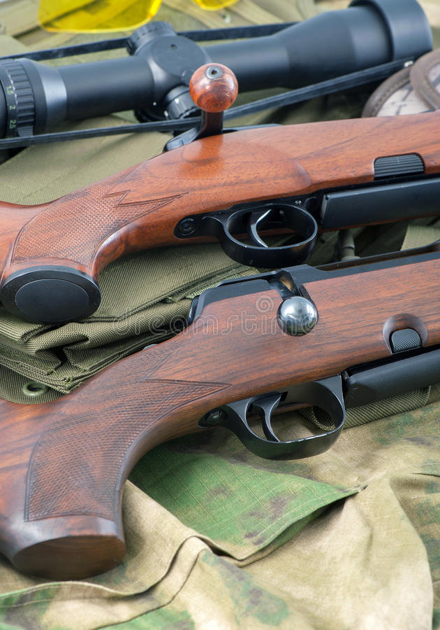 Typer av gevärvapen royaltyfri bild