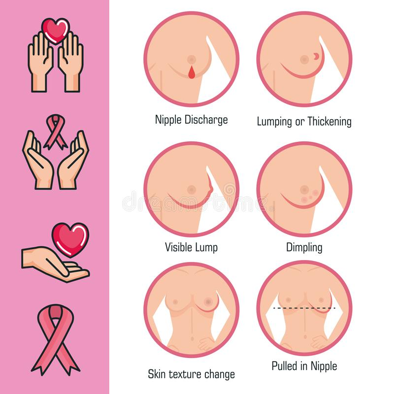 Types Of Appearances Of The Breast Stock Vector