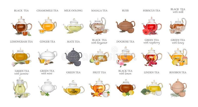 Types de thé réglés Bouilloire avec la boisson chaude illustration libre de droits