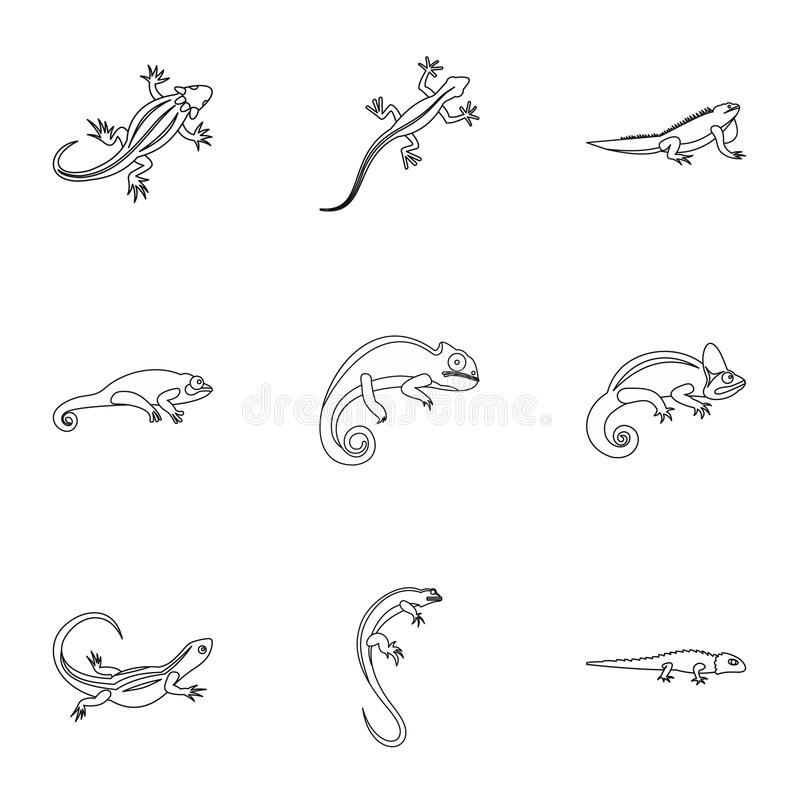 Types of iguana icons set, outline style. Types of iguana icons set. Outline illustration of 9 types of iguana icons for web royalty free illustration