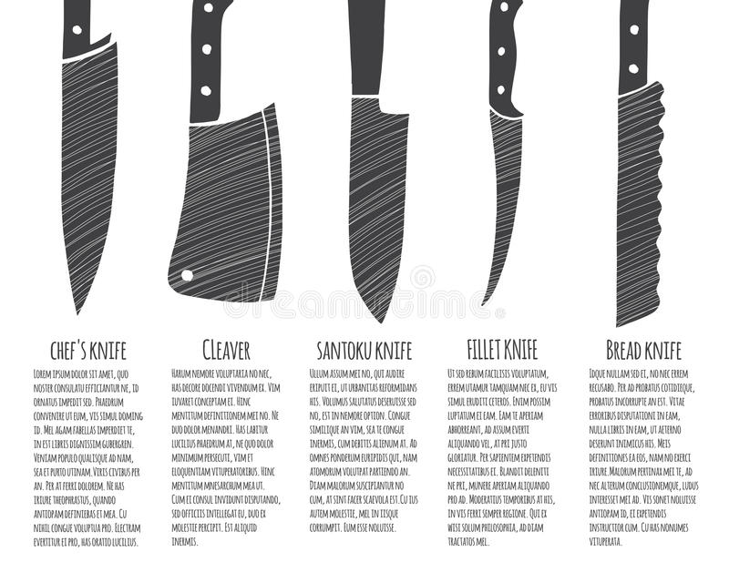 Download Types Of Kitchen Knives. Stock Vector. Illustration Of Bread    71951048