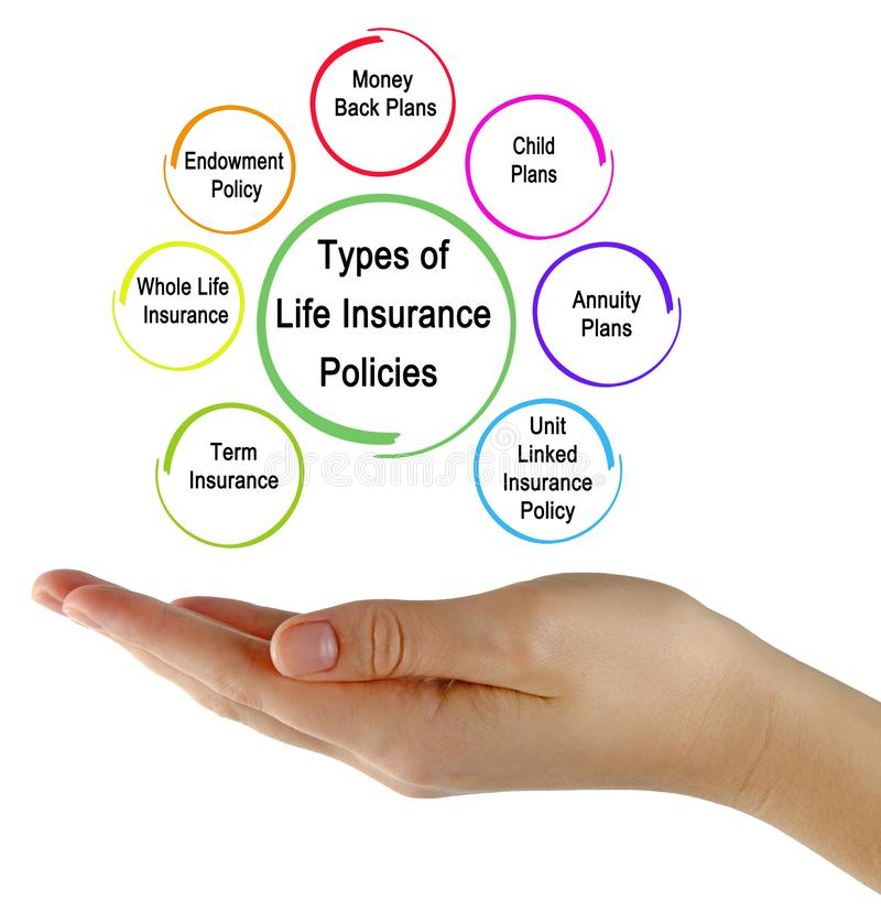 Types of Life Insurance Policies. Seven Types of Life Insurance Policies royalty free stock photo
