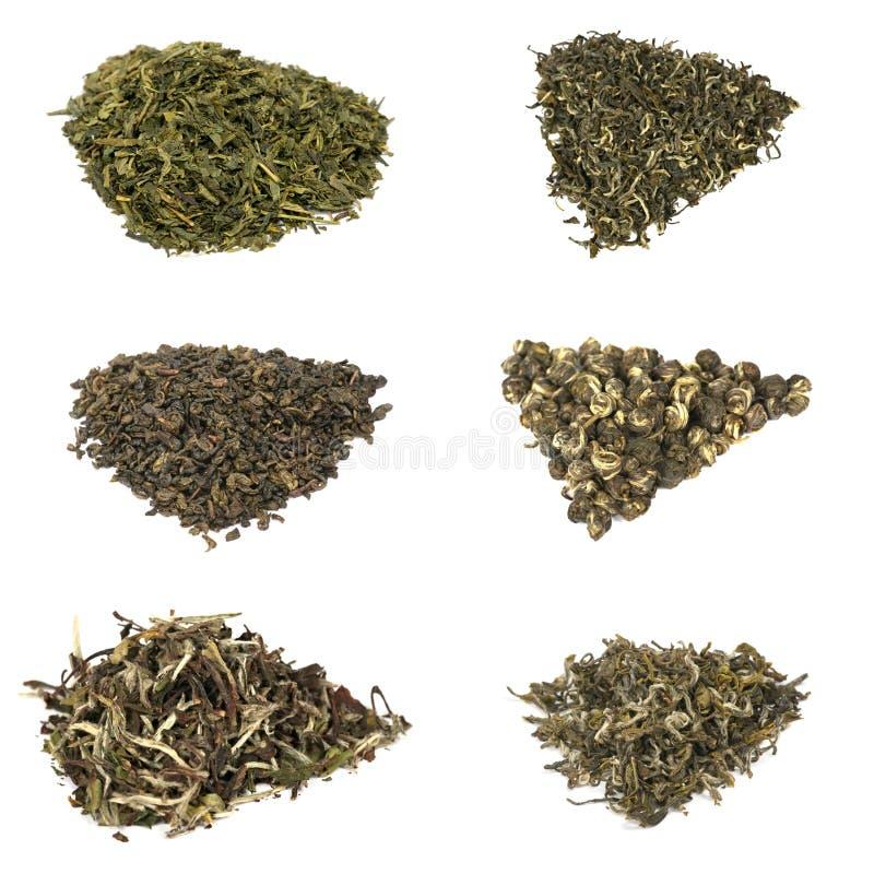 Free Types Of Elite Chineese Green Tea Royalty Free Stock Photos - 14561548