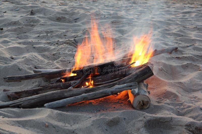 Types van vuren: taiga het branden op zand stock fotografie