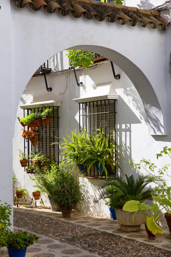 Typical andalusian patio in Granada, Spain stock photo