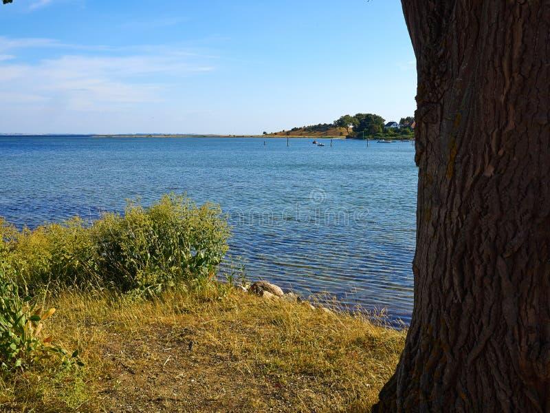 Typical beautiful Danish coastline landscape in the summer. Typical beautiful natural Danish coastline beach landscape in the summer Fyn Funen Denmark stock images