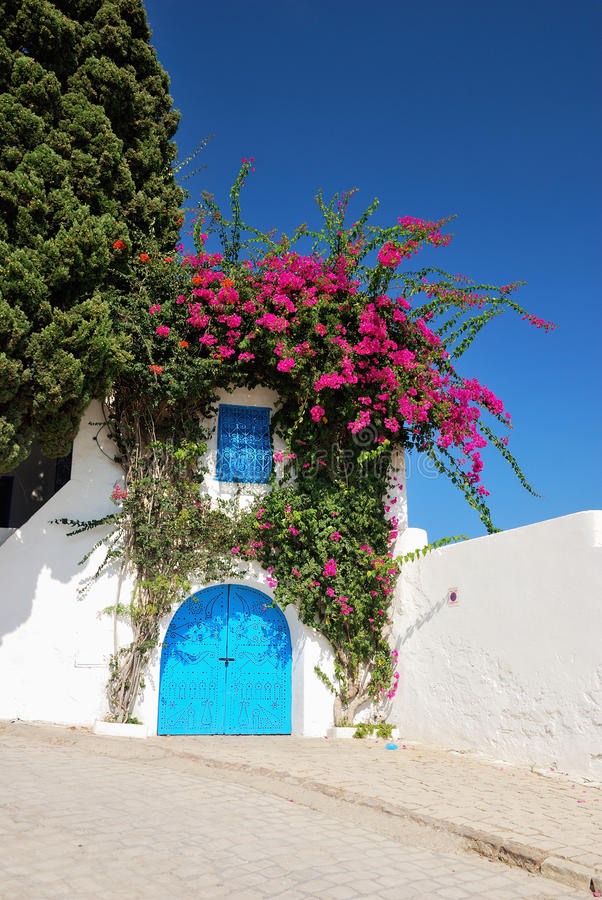 Typical Door In Sidi Bou Said Royalty Free Stock Photography