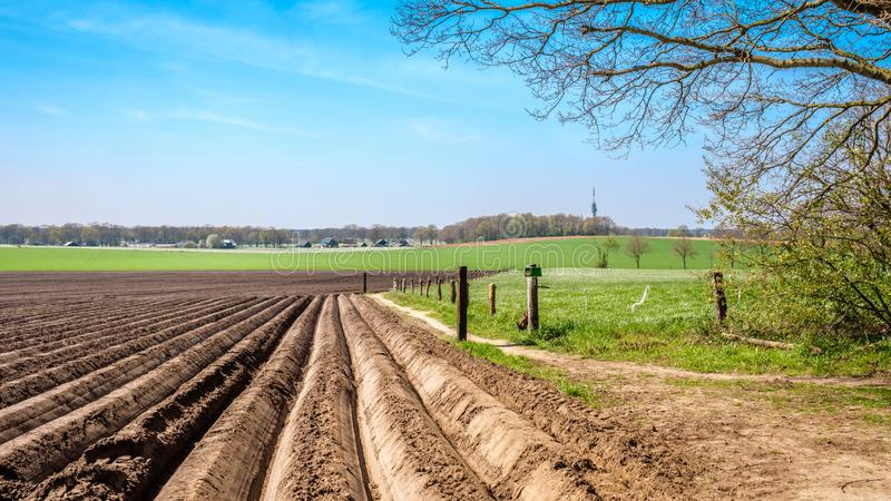 Typical Dutch farm landscape near Markelo Twente, Overijssel, The Netherlands. When walking the Dutch Hiking Tour of the Year near the village of Markelo stock image