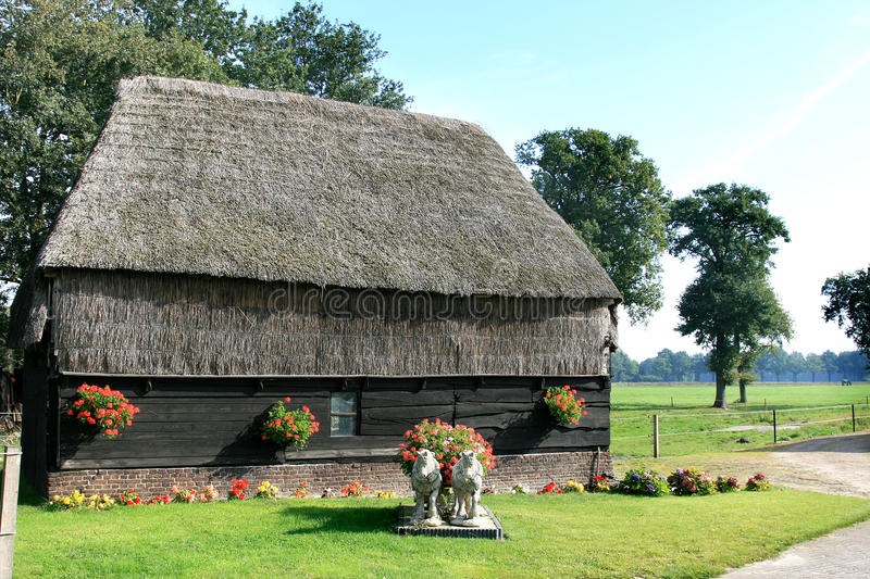 Typical dutch thatched barn and garden royalty free stock photo