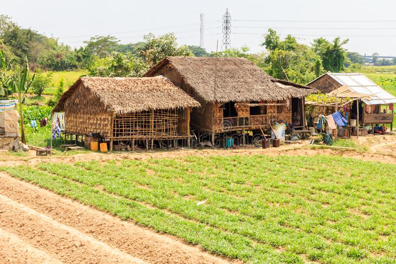 Typical farming landscape stock photo