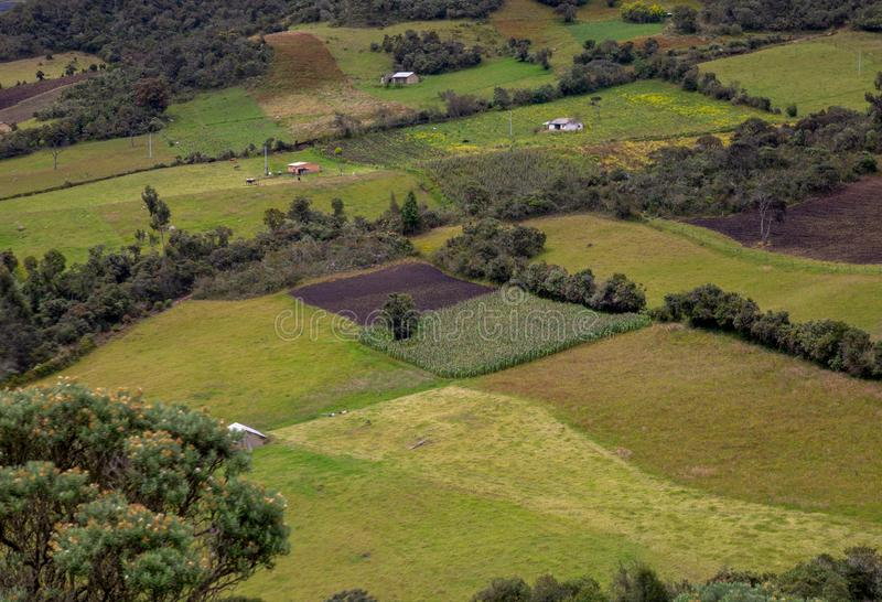 Typical  farmlands in different stages of the crops. Multiple exposure of some farmlands in different stages of the crops, at the high mountains of the central stock photos
