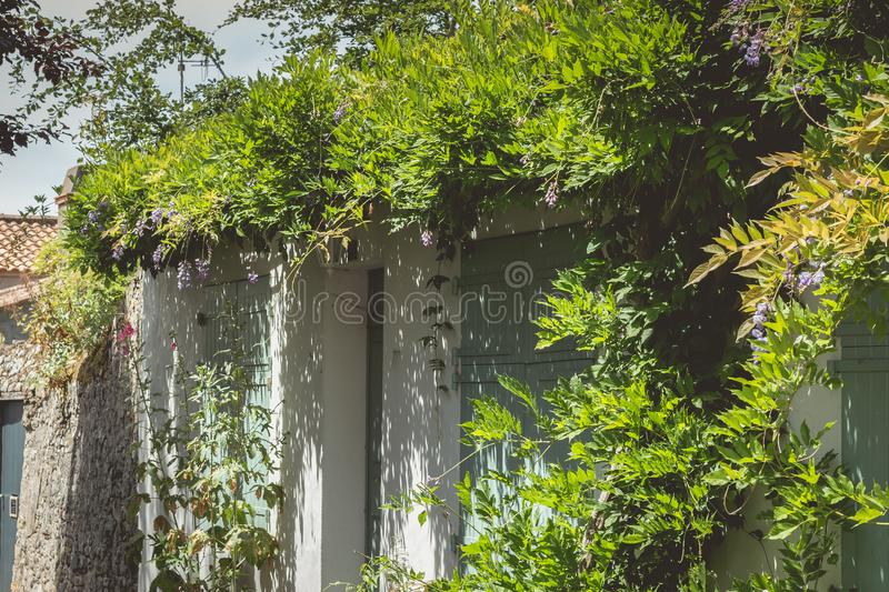 Typical flowery facade of the historic city center of Noirmoutier, France royalty free stock photography