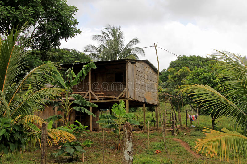 Typical house in the nicaraguan jungle, Nicaragua stock photos