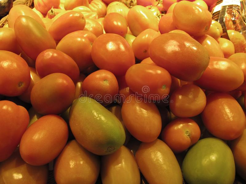 Typical italian vegetables the tomatoes. Typical italian vegetables the red tomatoes royalty free stock photo