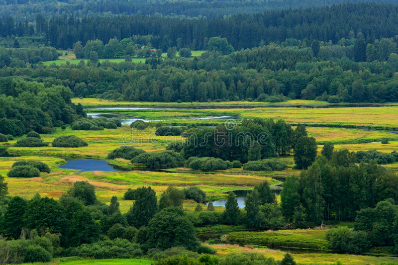 Typical landscape around Vltava river near Lipno reservoir, Sumava national park in Czech Republic. Green forest with river royalty free stock photography