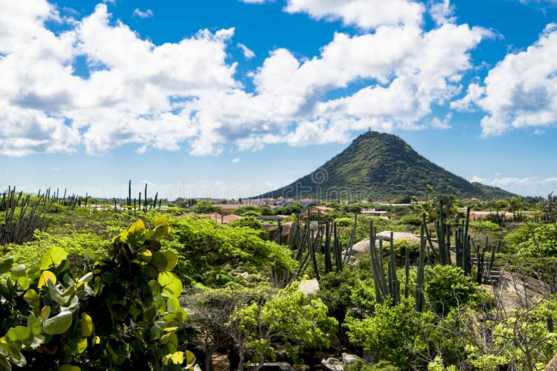 Cacti and boulders in front of Hooiberg, Aruba. Ayo rock formations: Typical landscape with rocks, brush and cactuses on Aruba, island in the Caribbean Sea stock photos