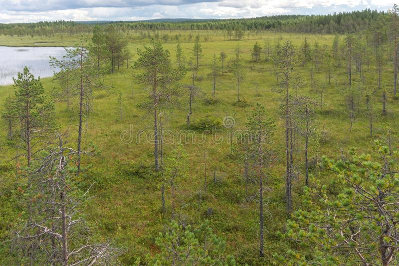 Characteristic landscape of the tundra, lake and vegetation, Fin. Typical landscape of the tundra, lake and vegetation, Finland stock image