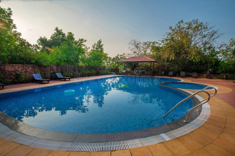 Typical pool in South India   Green nature. Typical pool in South India  near  one  or  more hotels stock photography