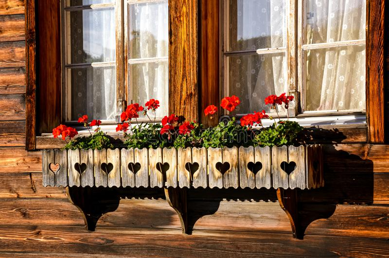 Typical red geranium flowers in the windows of traditional Alpine wooden chalets. Bavarian wooden hut. Flower decoration. stock photo
