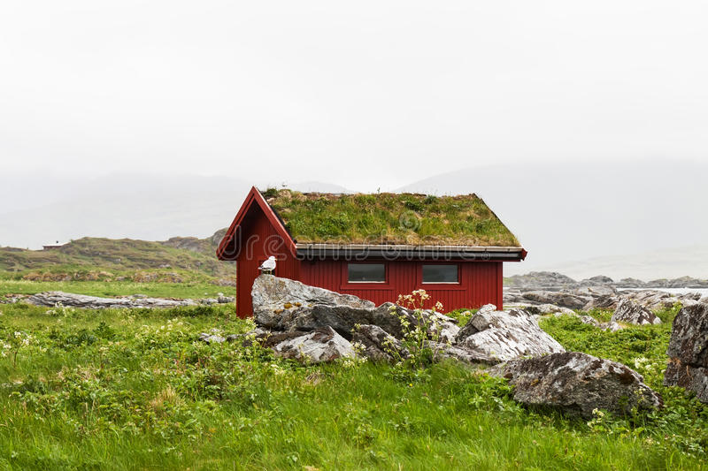 Typical red rorbu fishing hut in village , Lofoten royalty free stock photo