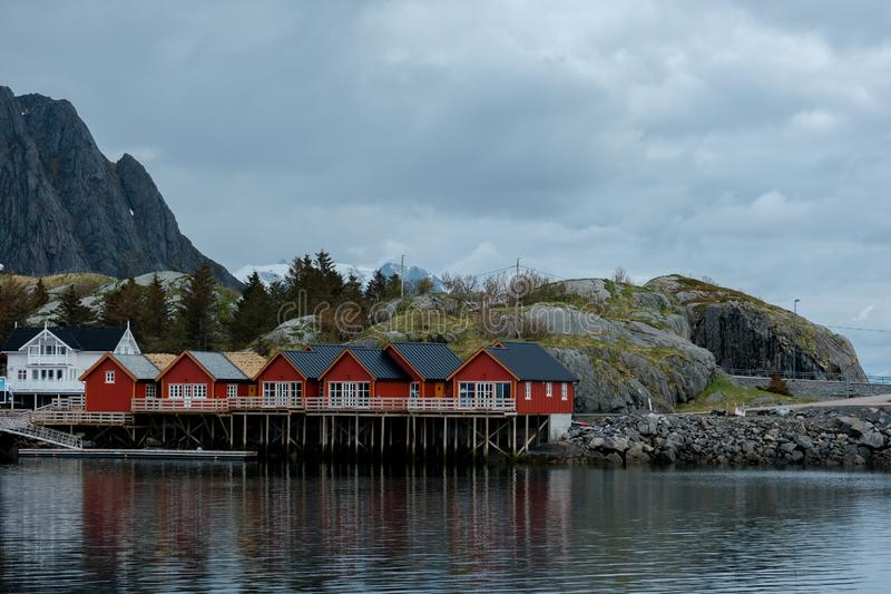 Typical red rorbu fishing huts with sod roof on Lofoten islands in Norway. Reflecting in fjord stock photos