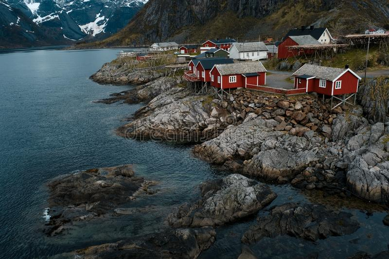 Typical red rorbu fishing huts with sod roof on Lofoten islands in Norway. Reflecting in fjord royalty free stock photo