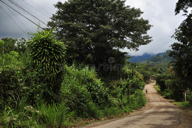 Typical Road In Costa Rica royalty free stock photography