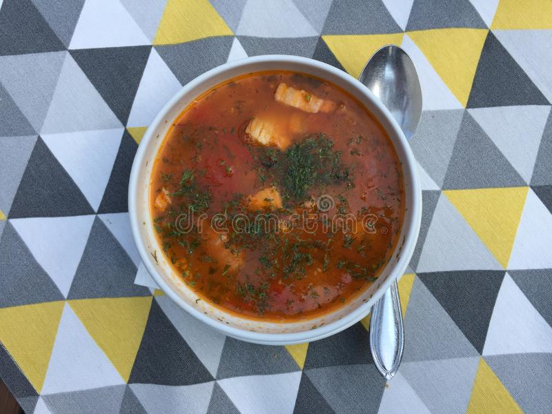 Typical Romanian Lentil and Chicken Soup royalty free stock photography