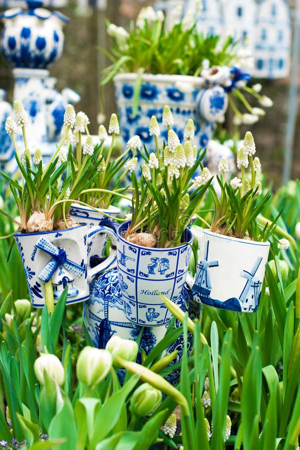 Typical scene of Netherlands: Dutch porcelain mugs with white tulips and other flowers in Keukenhof garden stock photos