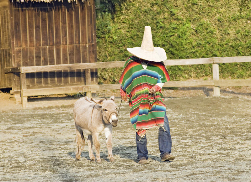 Download Typical South American Cowboy Editorial Photo - Image: 26935426