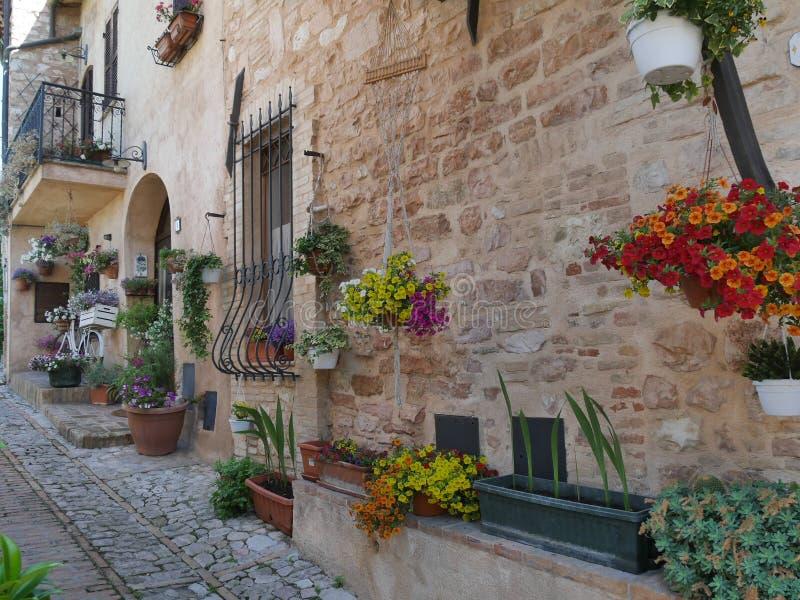 Spello - typical street gardens stock photos