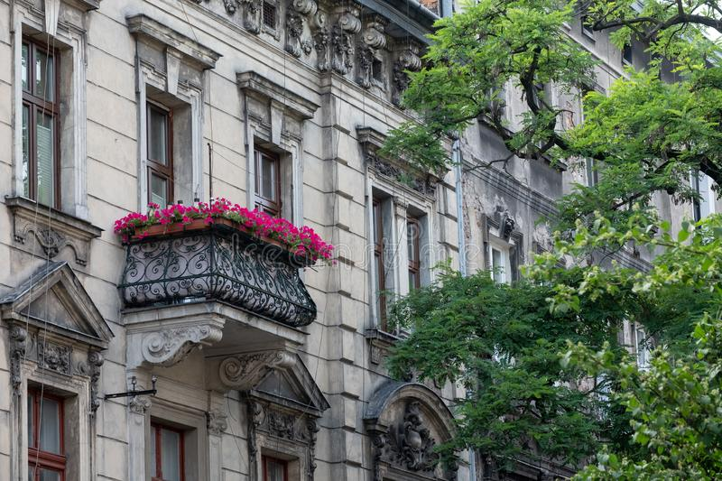 typical street scene in the city of Krakow, Poland, showing old building with balcony and pink flowers. royalty free stock photos