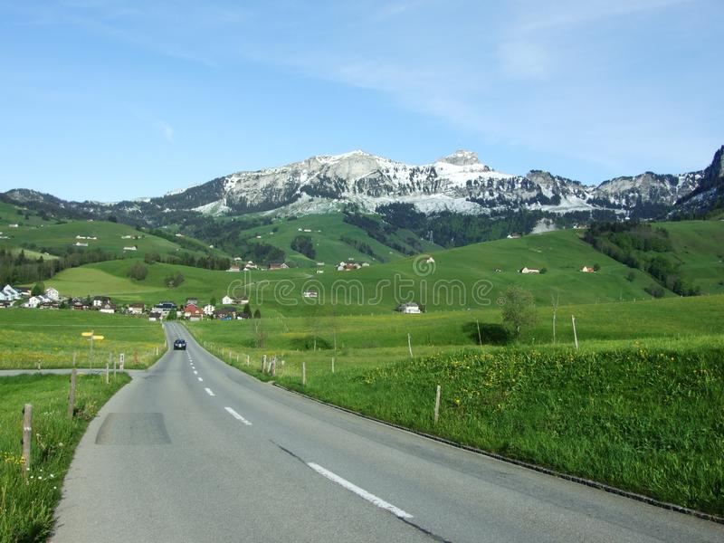 Typical Swiss Alpine Road through ecological pasture royalty free stock image