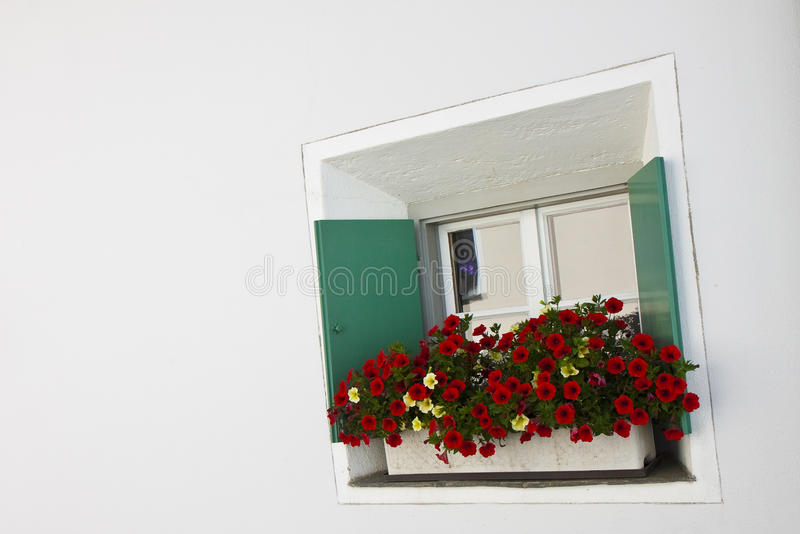 Typical swiss window with shutters in green and colorful flowers. On the windowsill - image with copy space stock photography