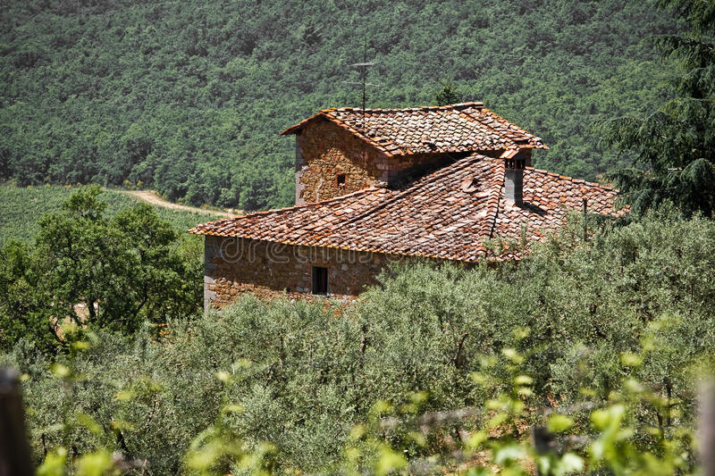 Typical Tuscan landscape royalty free stock photo