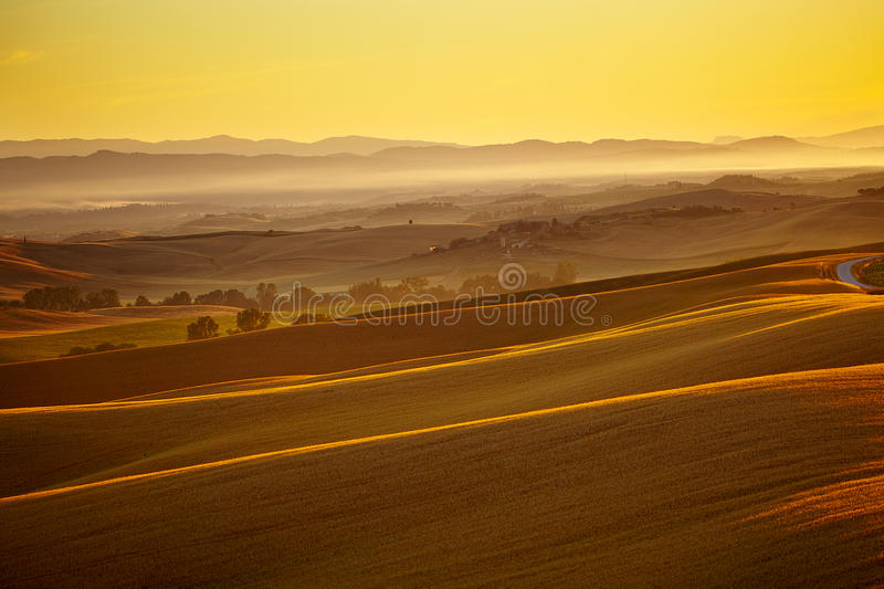 Download Typical tuscan landscape stock photo. Image of peaceful - 26146682
