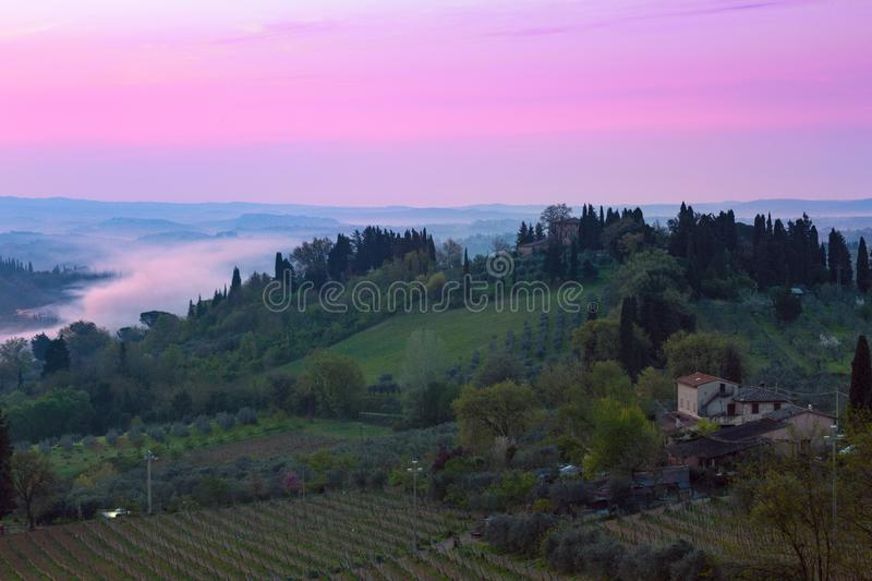 Typical Tuscan landscape. Dawn and typical Tuscan landscape - a view of a villa on a hill, a cypress alley and a valley with vineyards, province of Siena royalty free stock images