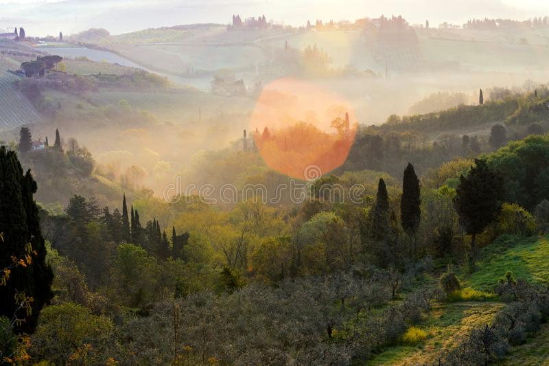 Typical Tuscan landscape. Fog and typical Tuscan landscape - a view of a villa on a hill, a cypress alley and a valley with vineyards, province of Siena. Tuscany royalty free stock image