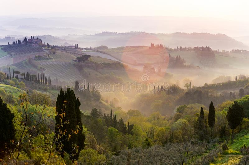 Typical Tuscan landscape. Fog and typical Tuscan landscape - a view of a villa on a hill, a cypress alley and a valley with vineyards, province of Siena. Tuscany royalty free stock images