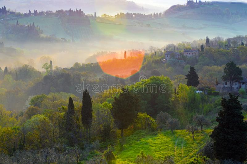 Typical Tuscan landscape. Fog and typical Tuscan landscape - a view of a villa on a hill, a cypress alley and a valley with vineyards, province of Siena. Tuscany royalty free stock photography